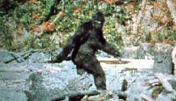 bigfoot png